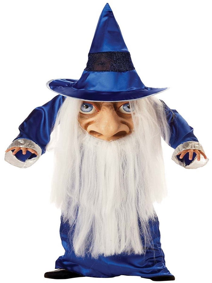 Showing Media & Posts for Wizard costume funny | www.picofunny.com