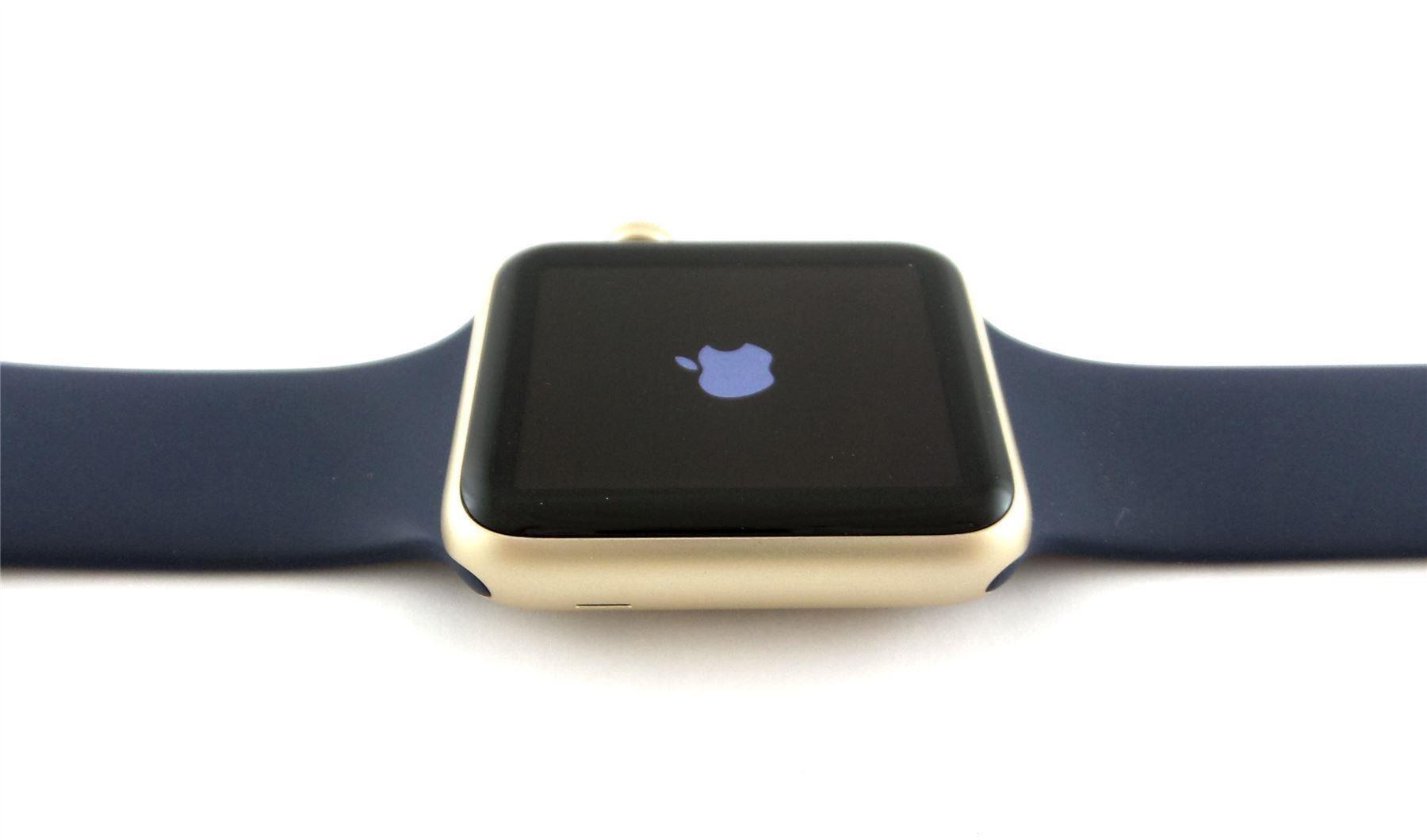 Apple Watch Sport Midnight Blue Gold Boston Enviro Film Festival 2014