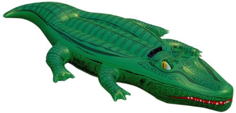 Inflatable blow up 66 x 31 childrens crocodile swimming Blow up alligator for swimming pool