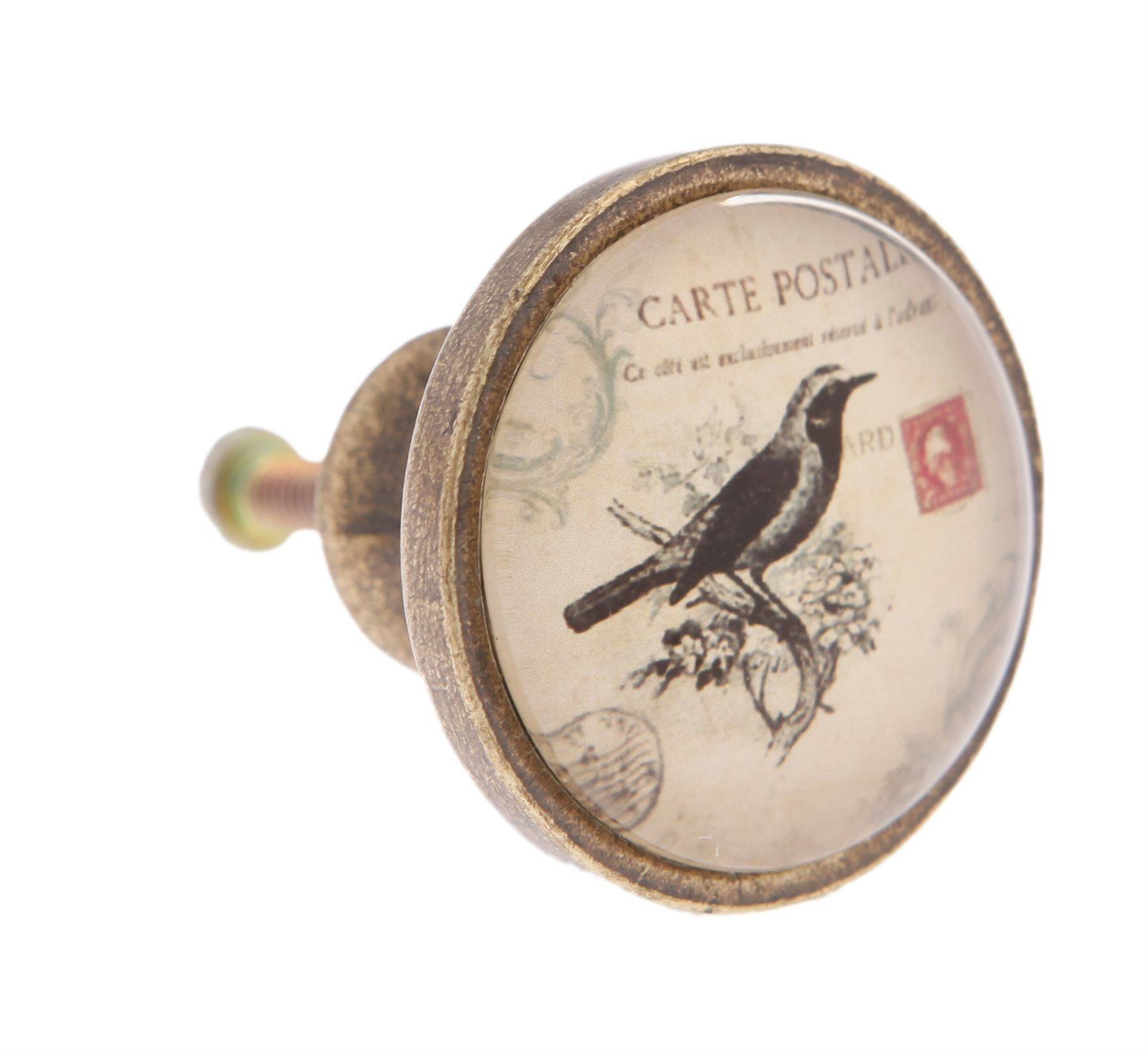VINTAGE PAINTED BIRDS DOOR KNOBS ANTIQUE ILLUSTRATED PULLS FURNITURE ...