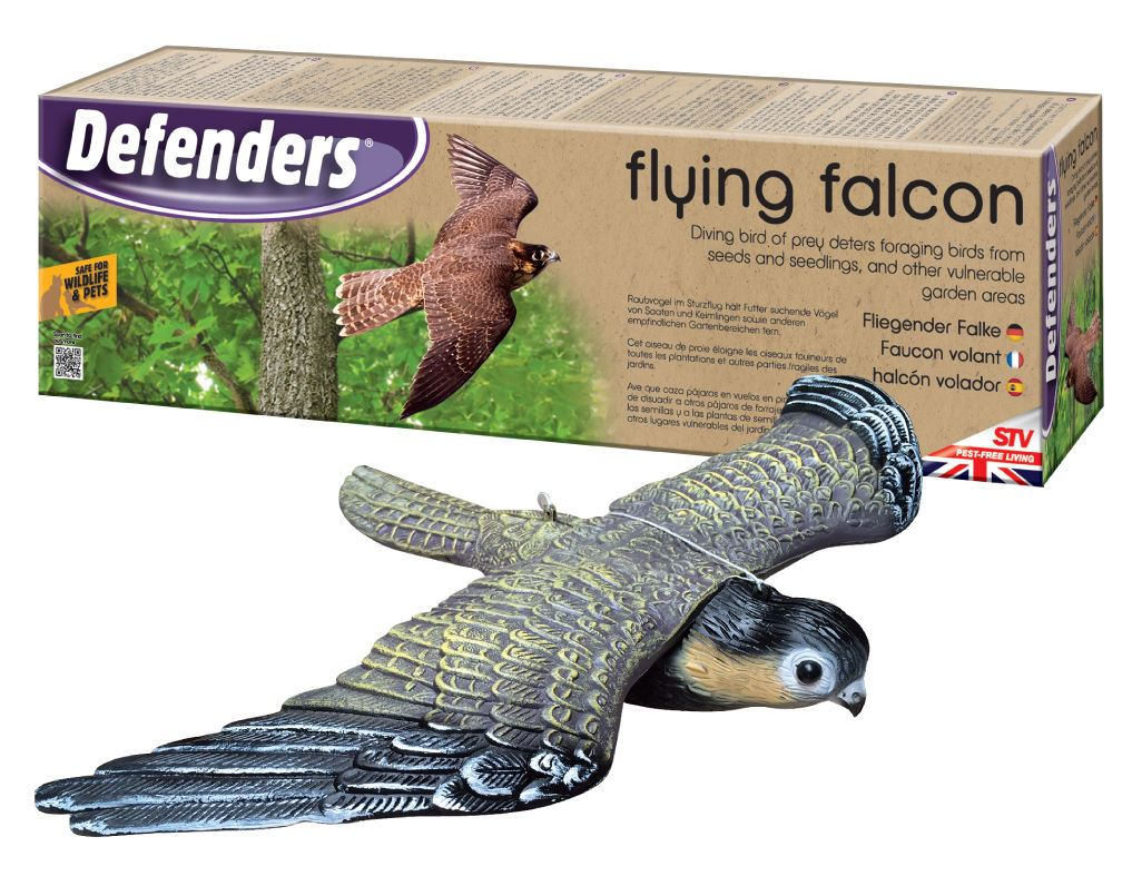 how to get rid of falcon birds