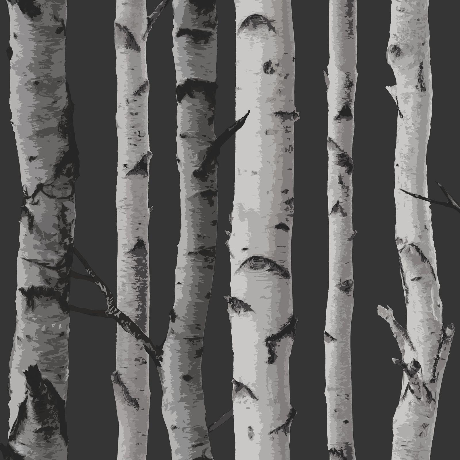 Fine Decor Birch Trees 10m Forest Wallpaper Cream