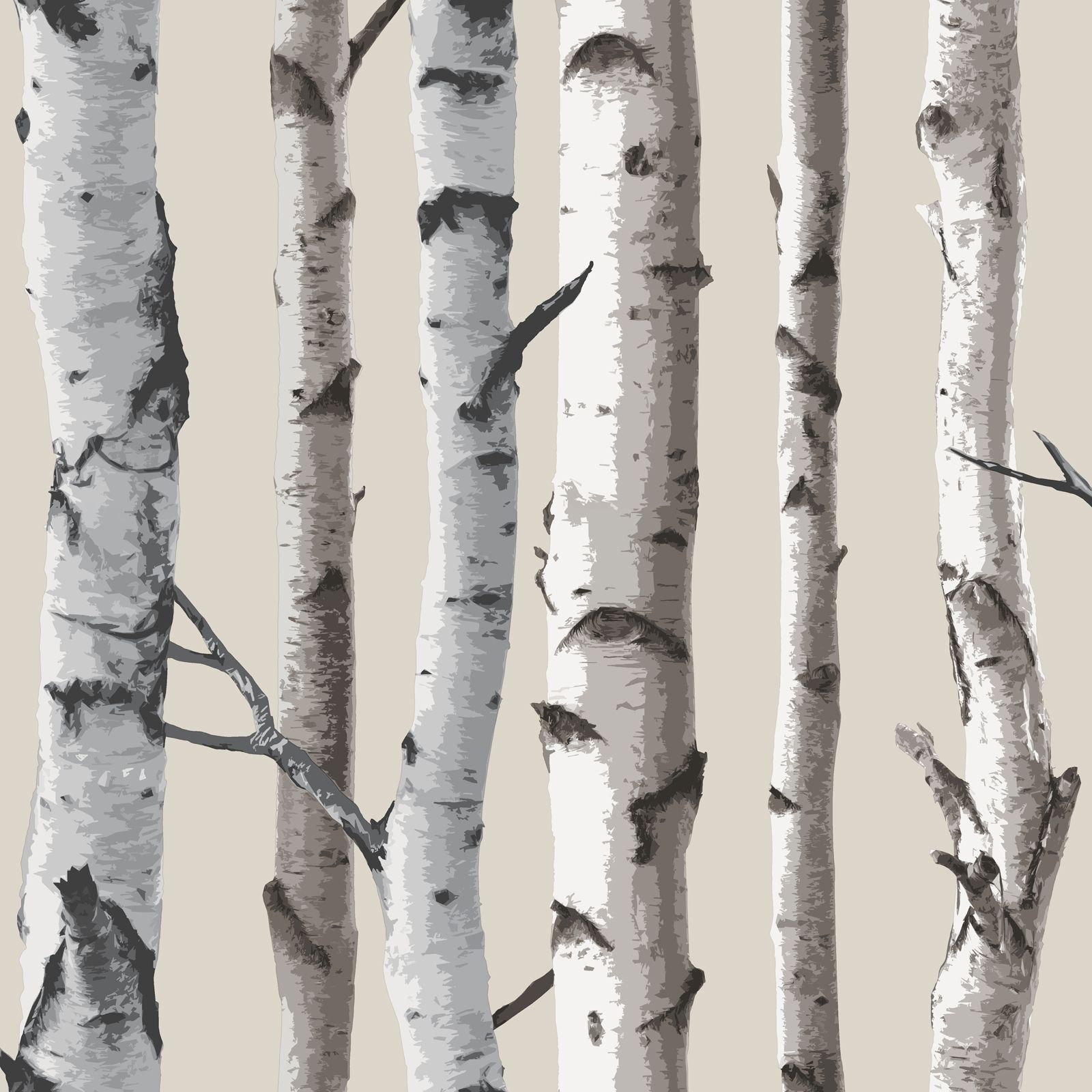 Fine Decor Birch Trees 10m Wallpaper White Amp Silver Ebay