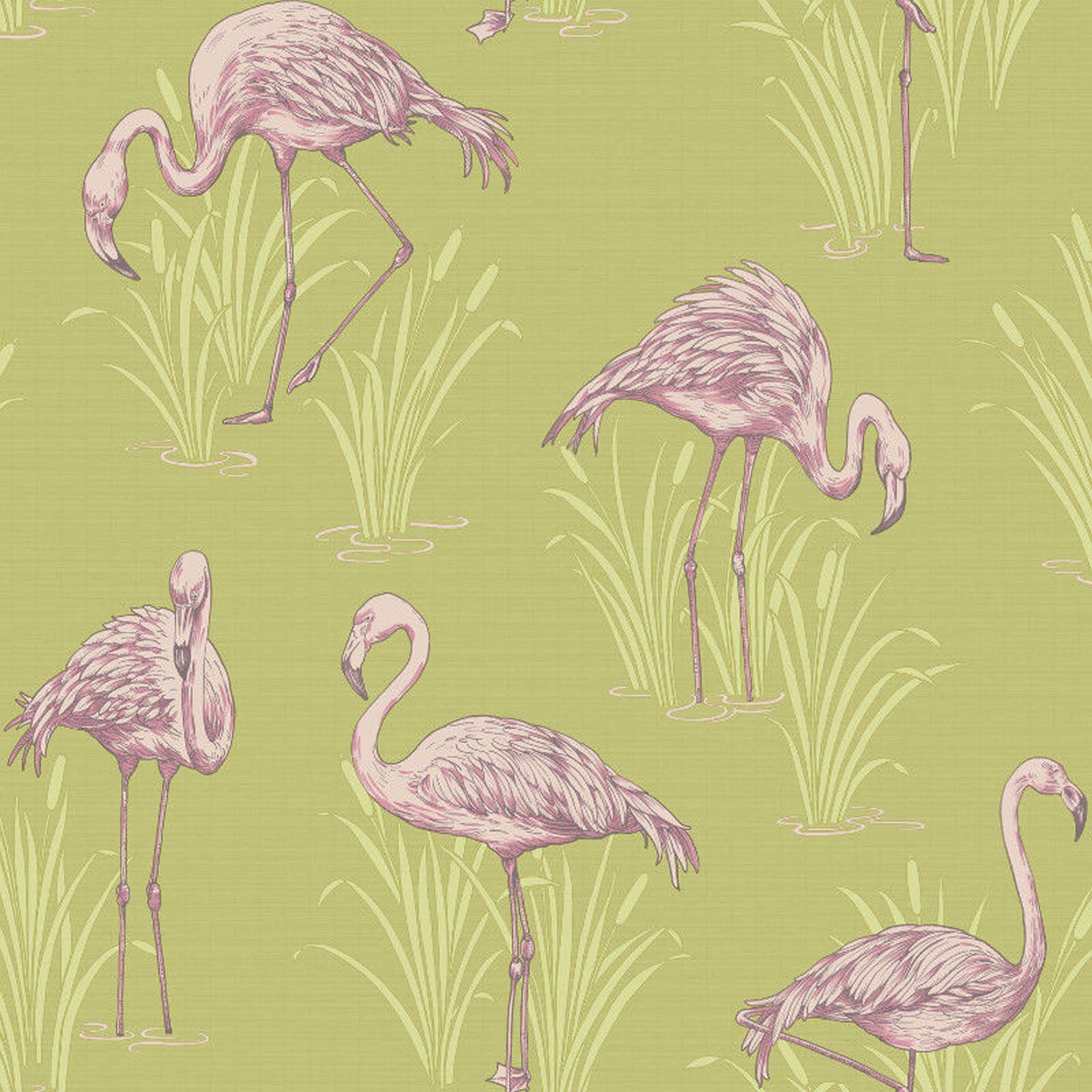 Lagoon vintage flamingo feature wallpaper green pink for Wallpaper homebase green