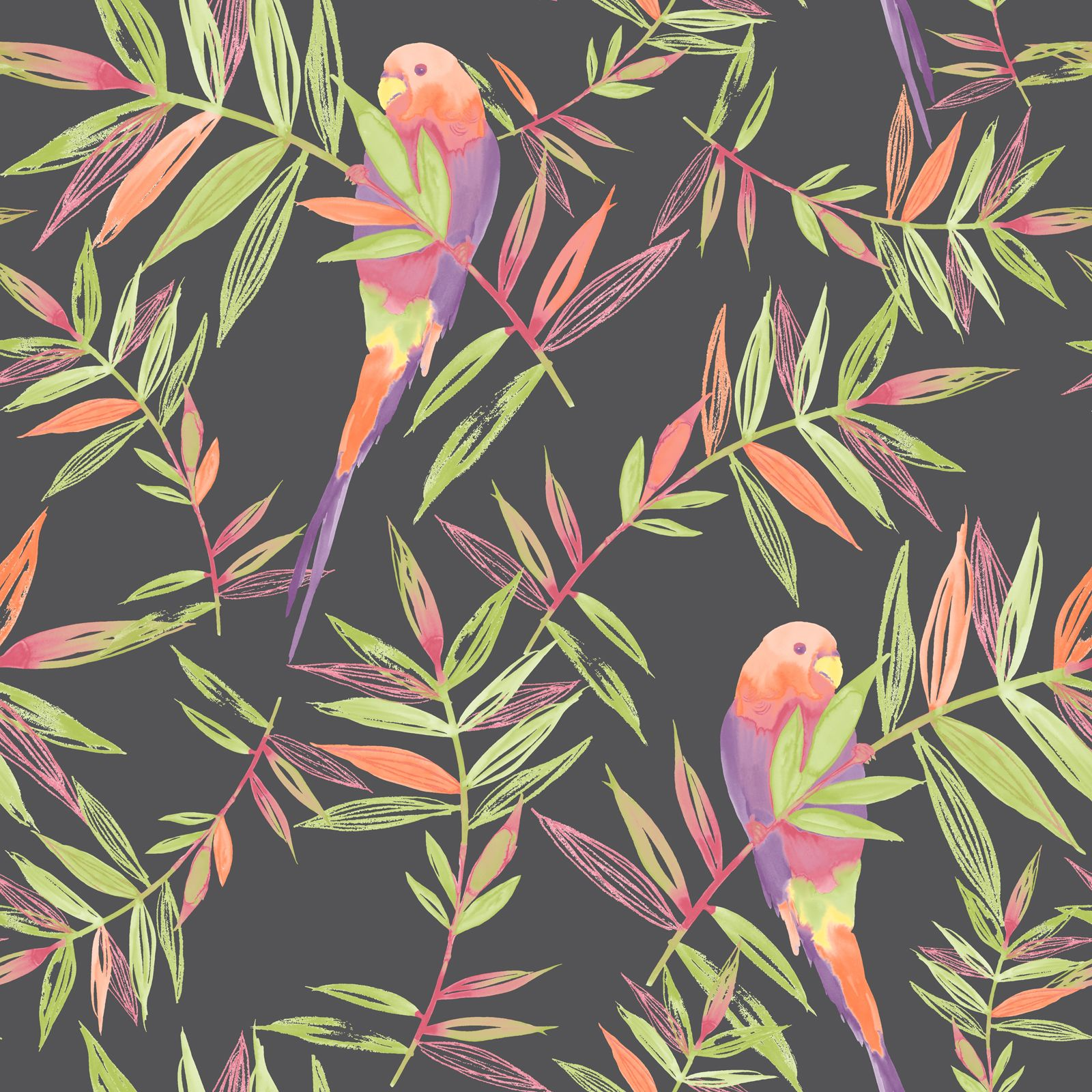 tropical bird wallpaper for walls - photo #2