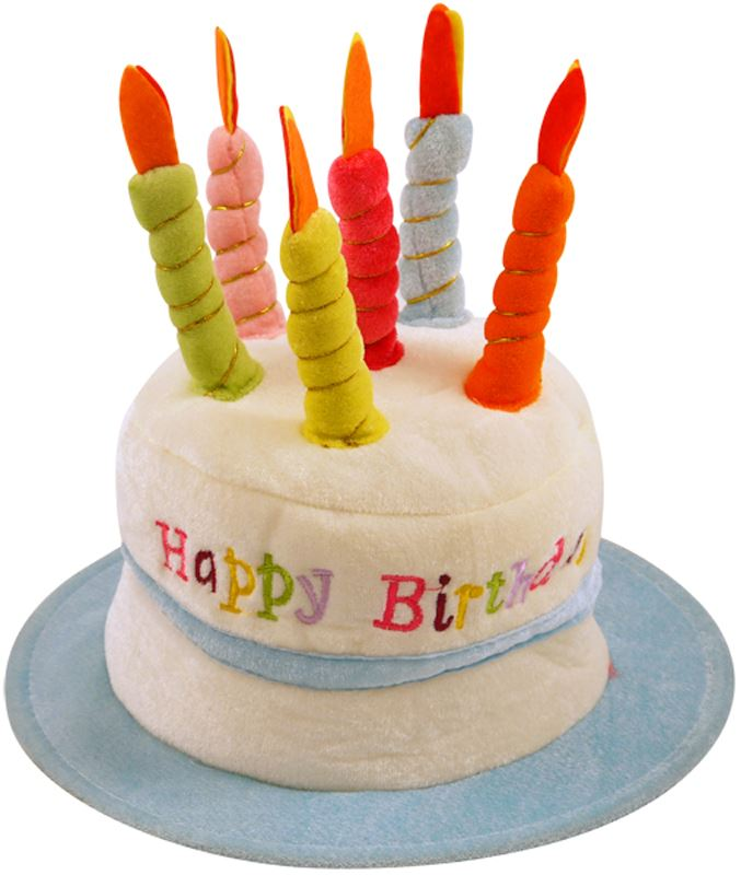 Happy Birthday Cake Hat With Candles Plush Fancy Dress