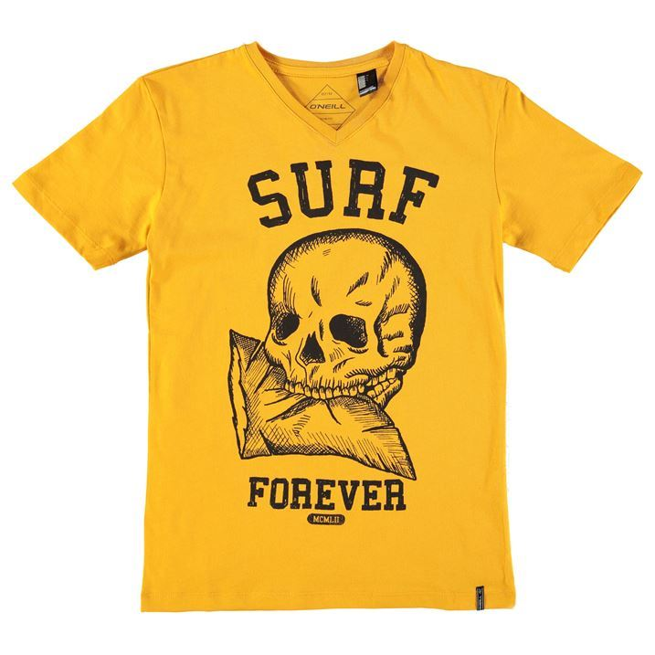 Oneill Kids Junior Boys Surf T Shirt Short Sleeve V Neck