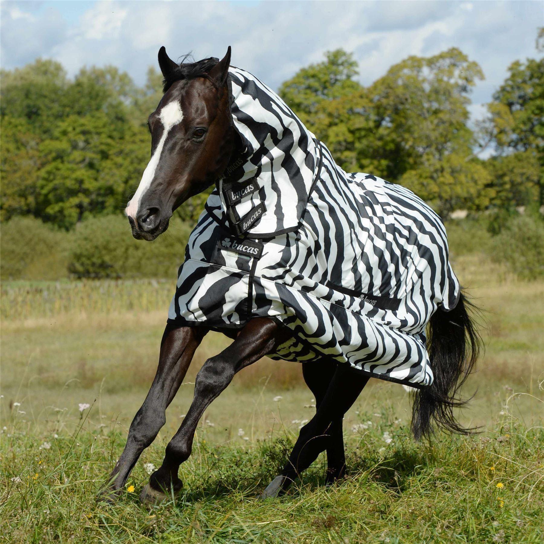 Zebra Fly Rug Uk: Bucas Sweet Itch Fly Rug - Zebra Print