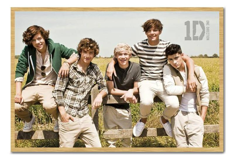 Framed-Large-One-Direction-In-The-Summer-Poster-New-Ready-To-Hang