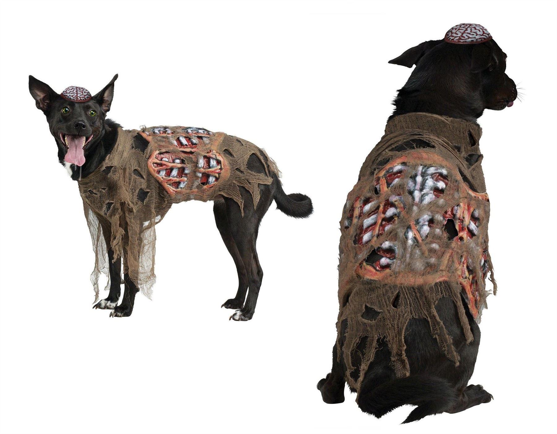 Zombie Dog Costume Uk