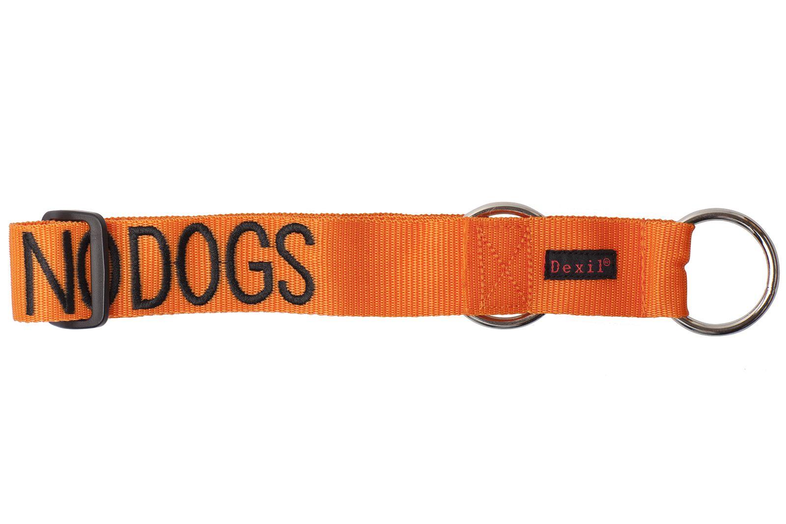 Blind And Deaf Dog Collar