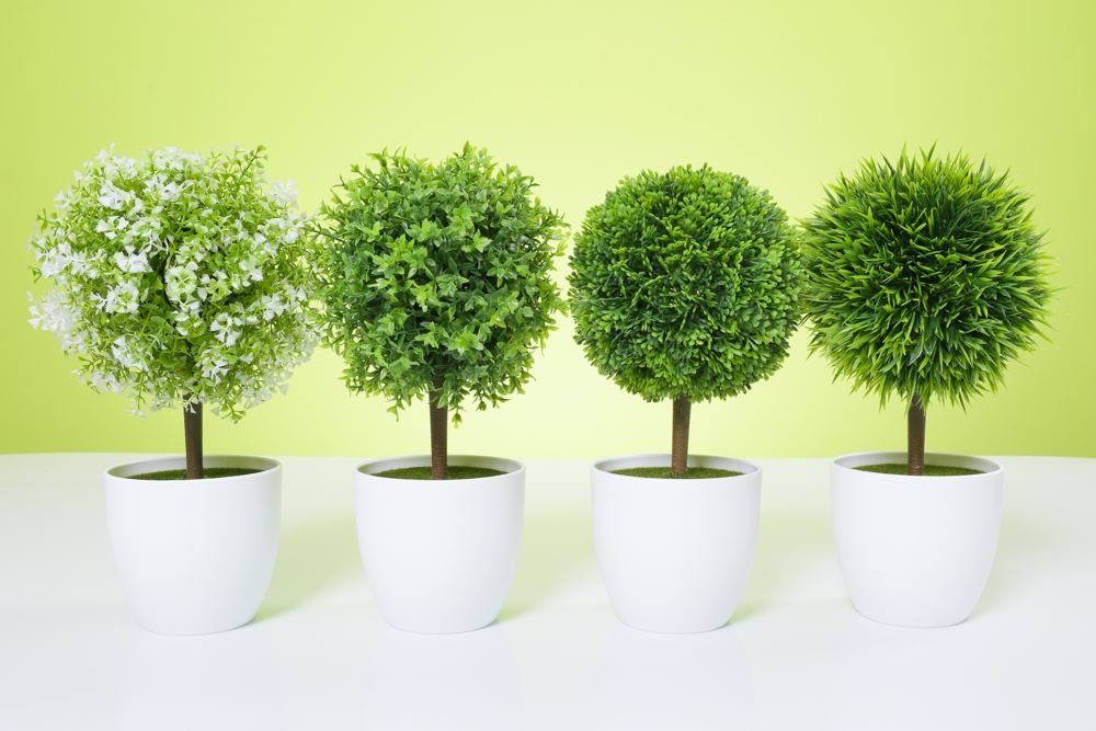 Artificial Topiary Tree Amp Ball Flowers Buxus Boxwood