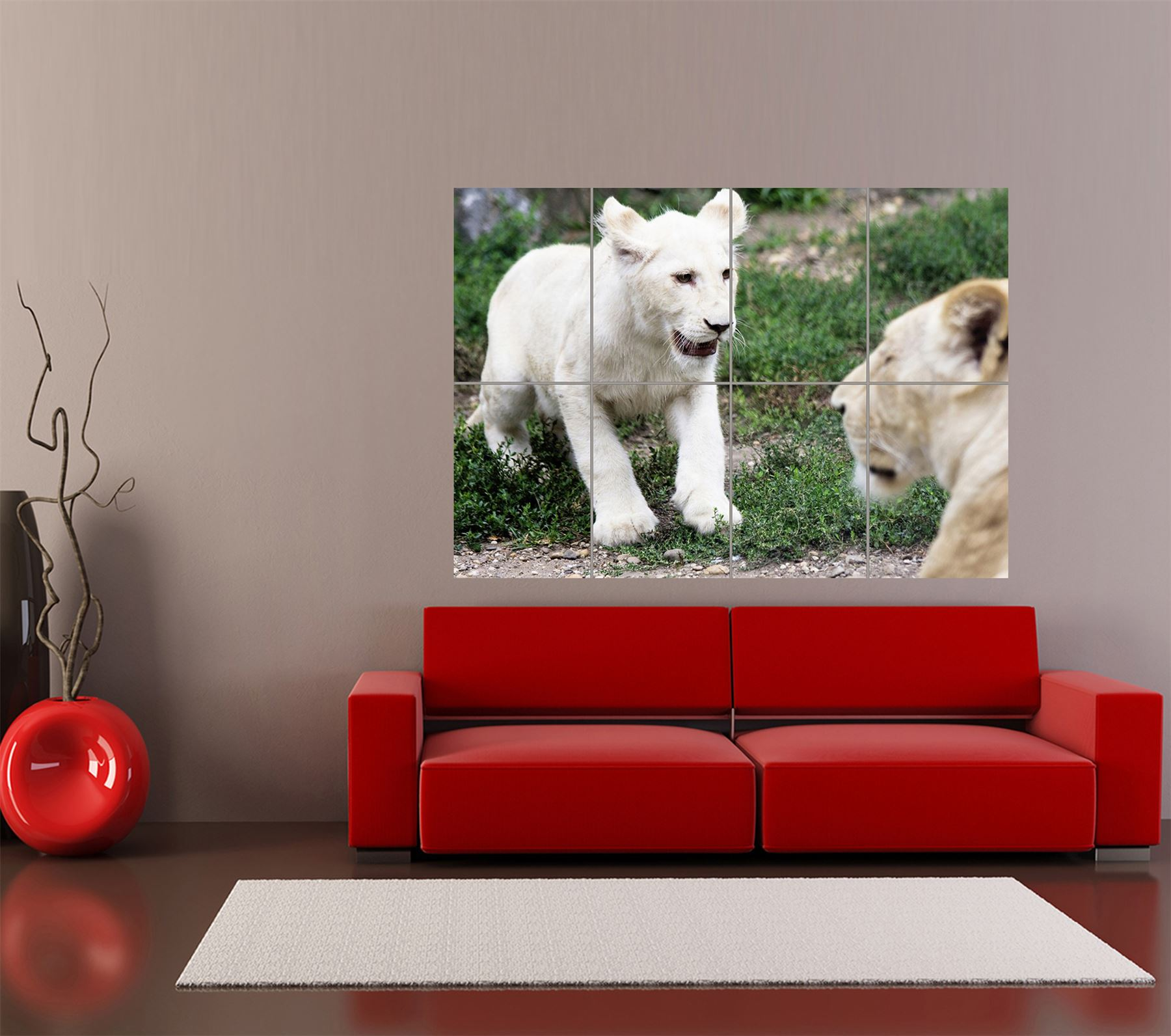 WHITE-LION-CUB-ANIMAL-CAT-PHOTOGRAPHY-GIANT-ART-PRINT-HOME-DECOR-POSTER-OZ2957