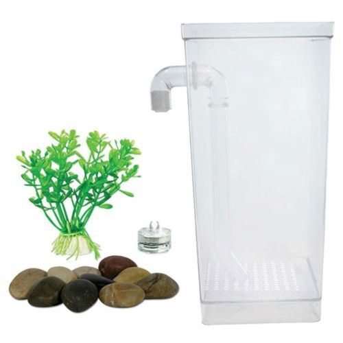 Self cleaning aquarium my fun fish tank complete kit with for Fish tank cleaning kit