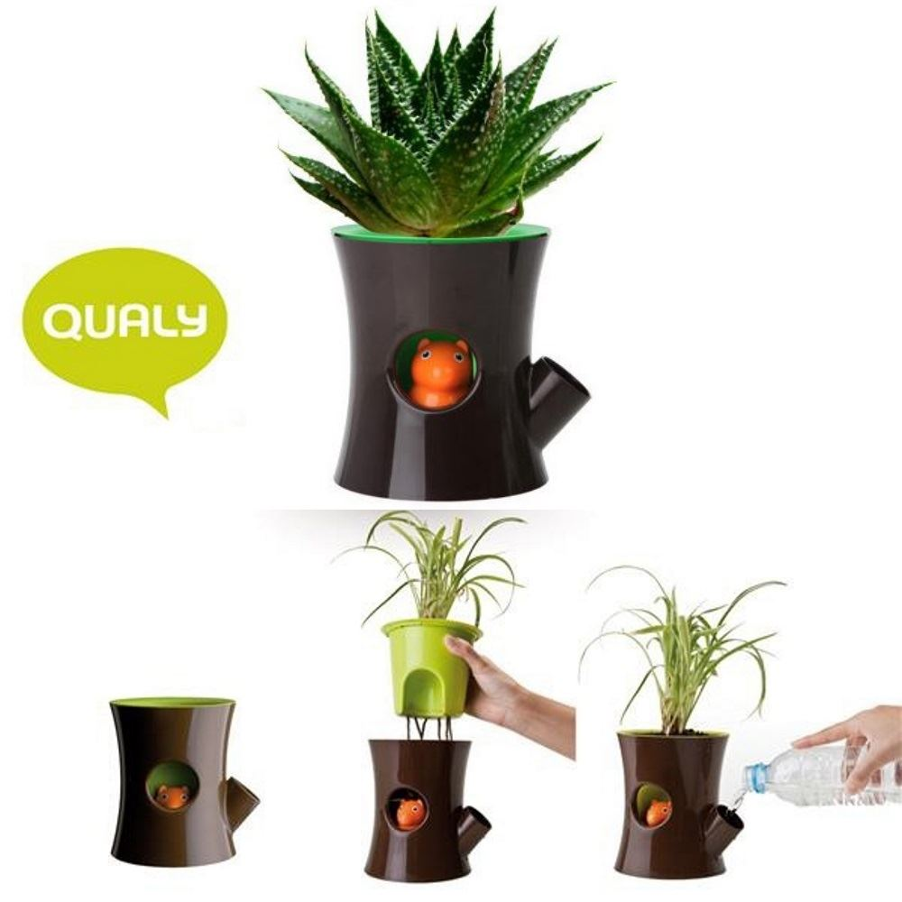 qualy log eichh rnchen selbst bew sserung pflanze. Black Bedroom Furniture Sets. Home Design Ideas