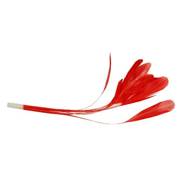 "CO019  Coq Stripped feathers 10pcs 7 - 8"" - For fascinators, hats & craft use"