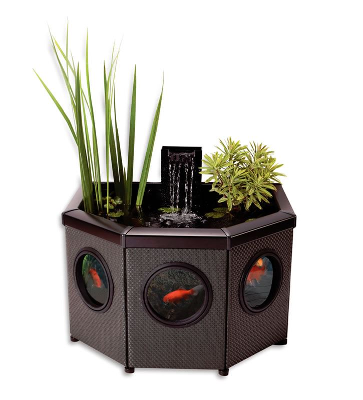 Blagdon Affinity Patio Water Feature Fish Pond HalfMoon Waterfall ... M Fish Packaging