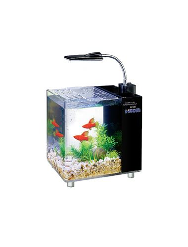 Hidom aquarium fish tank 10 15 litre mini office desktop for Desktop fish tank
