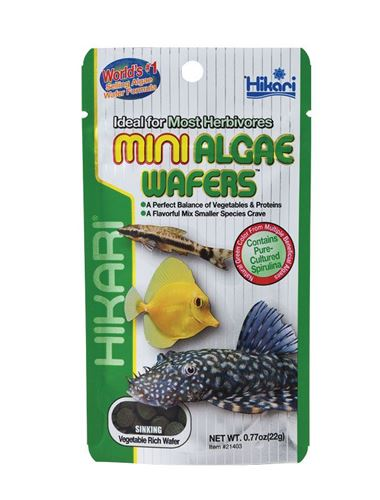 Hikari algae wafer catfish pleco sinking tropical aquarium for Hikari fish food