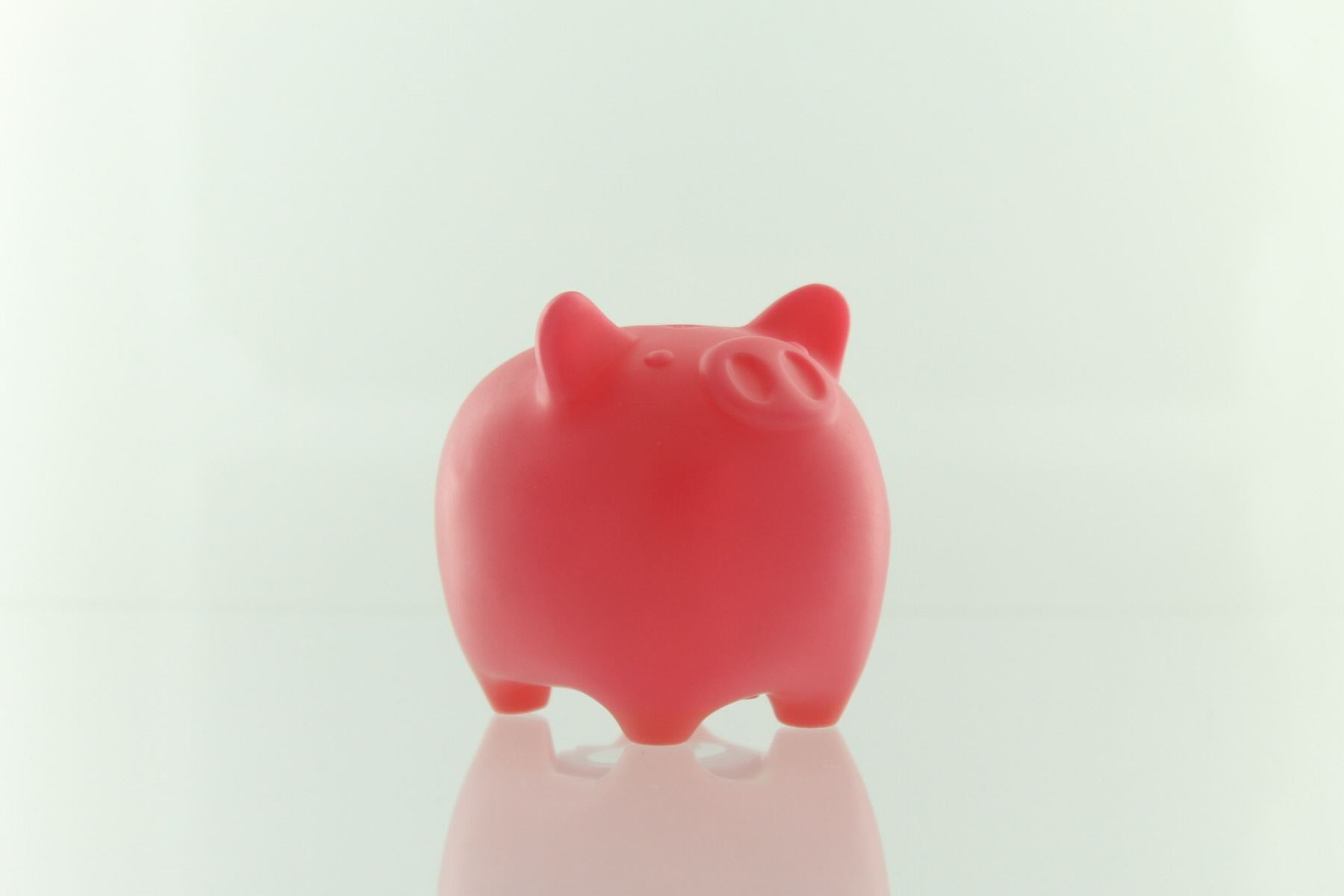 Coink mini piggy bank multiple colors ebay for Mini piggy banks