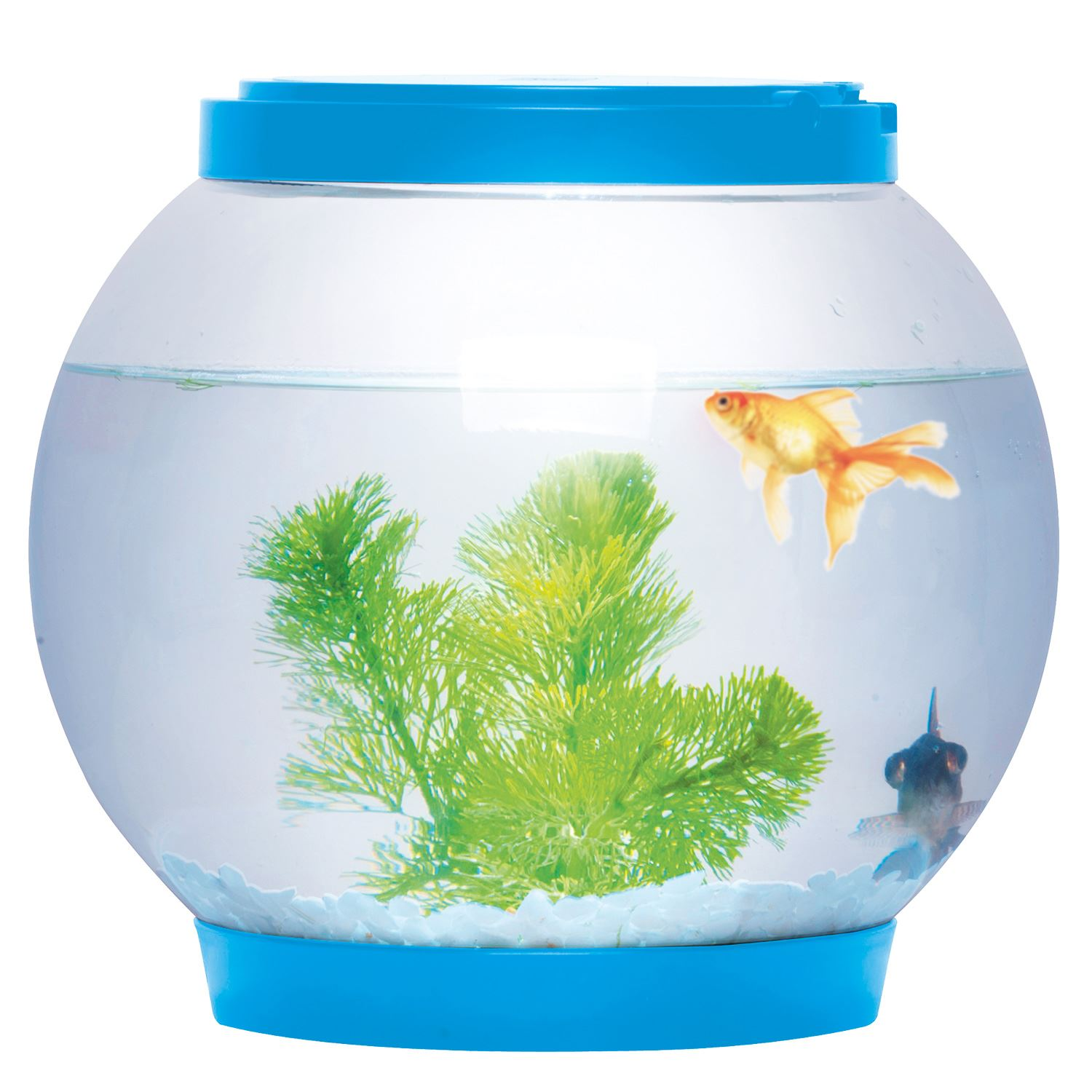 5 litre glass fish bowl led light aquarium goldfish betta