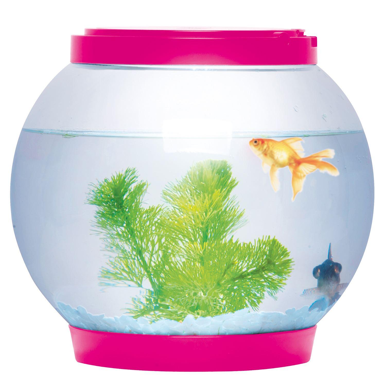 5 Litre Glass Fish Bowl Led Light Aquarium Goldfish Betta Tank Accessories New Ebay