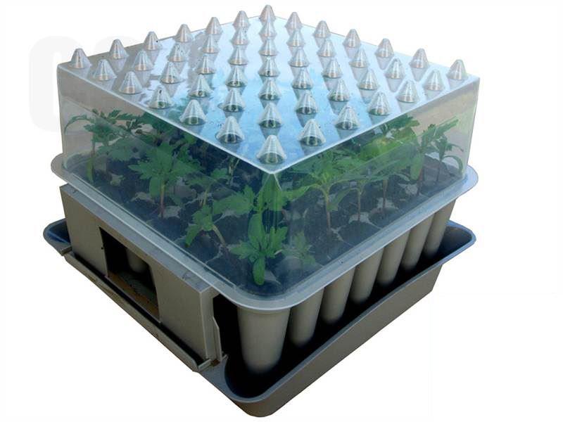 agralan compact plug plant potting propagator trainer tray ebay. Black Bedroom Furniture Sets. Home Design Ideas