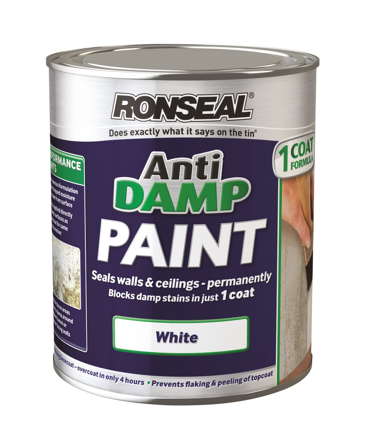 Can I Use A Paint Stain In Ronseal Damp Paint