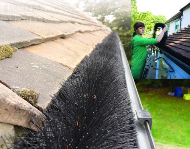 2 x 4m original hedgehog leaf guard gutter brush