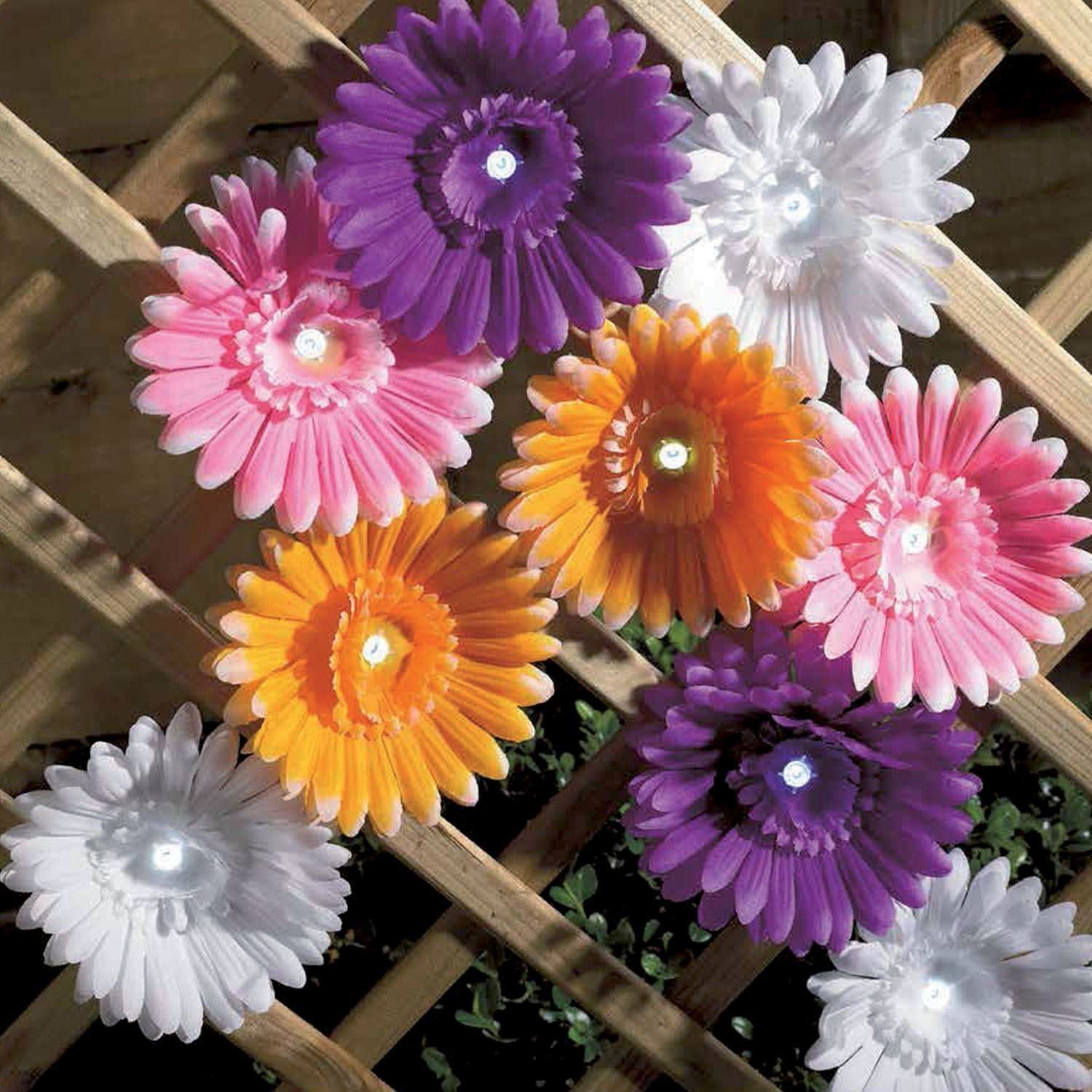 Daisy Solar String Lights: 12 Solar Powered Daisy Flower Led String Light Multi