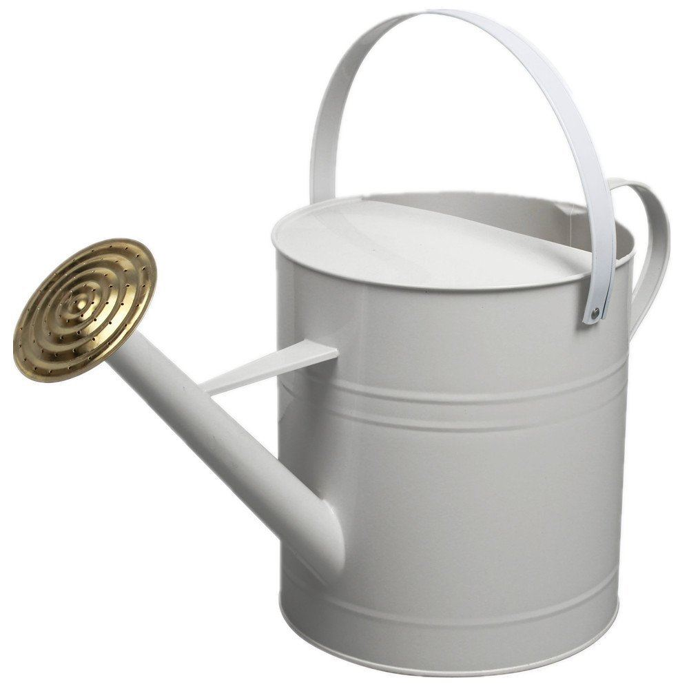Garden Plant Colour Galvanised Metal Steel Watering Can 9 Litre With Brass Rose Ebay
