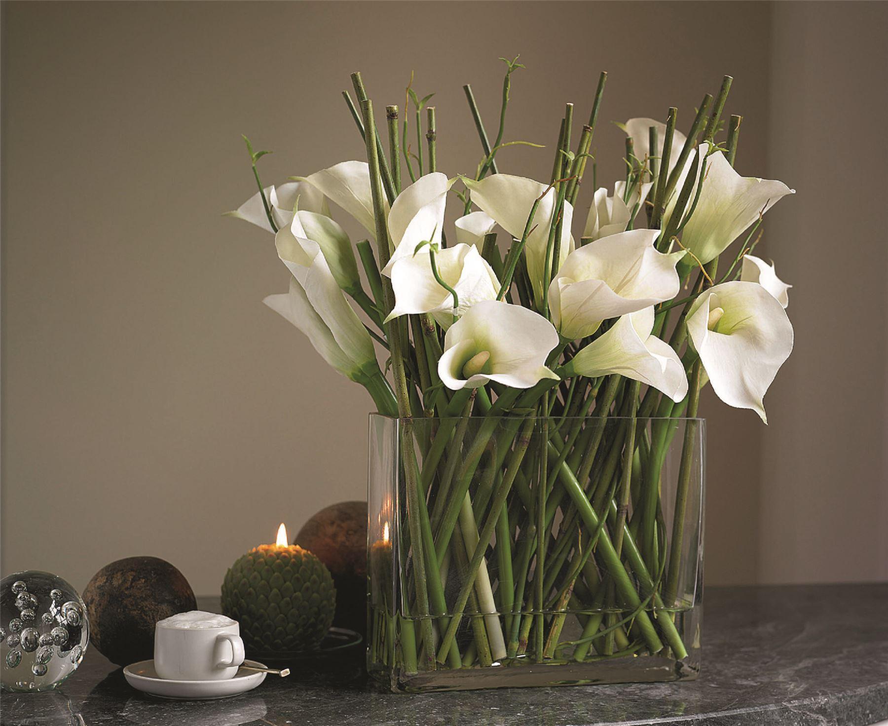 Bloom White Calla Lily Arrangement Slender Stems Green