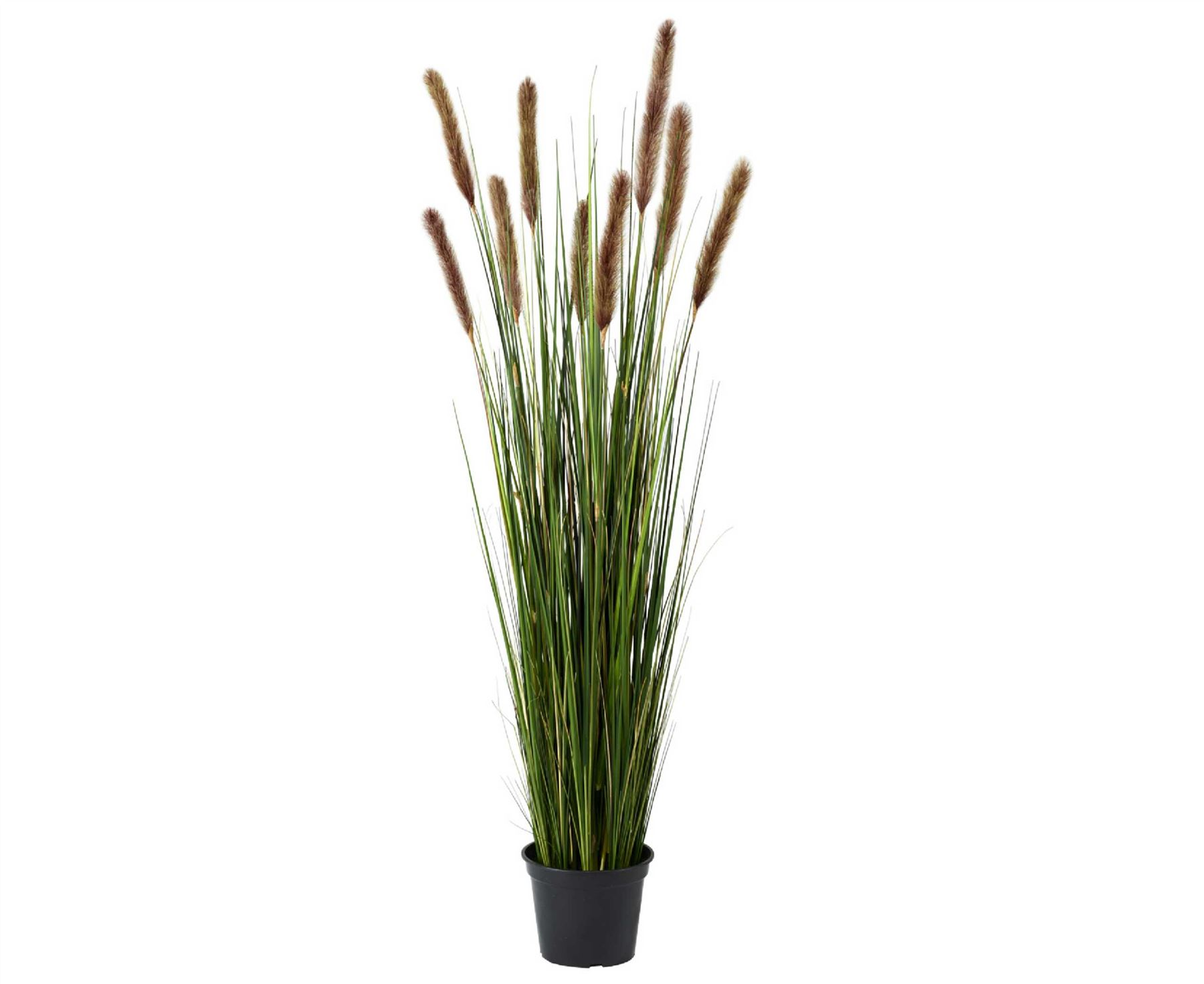Bloom 4ft potted grass tall 120cm artificial plant home for Tall green ornamental grass