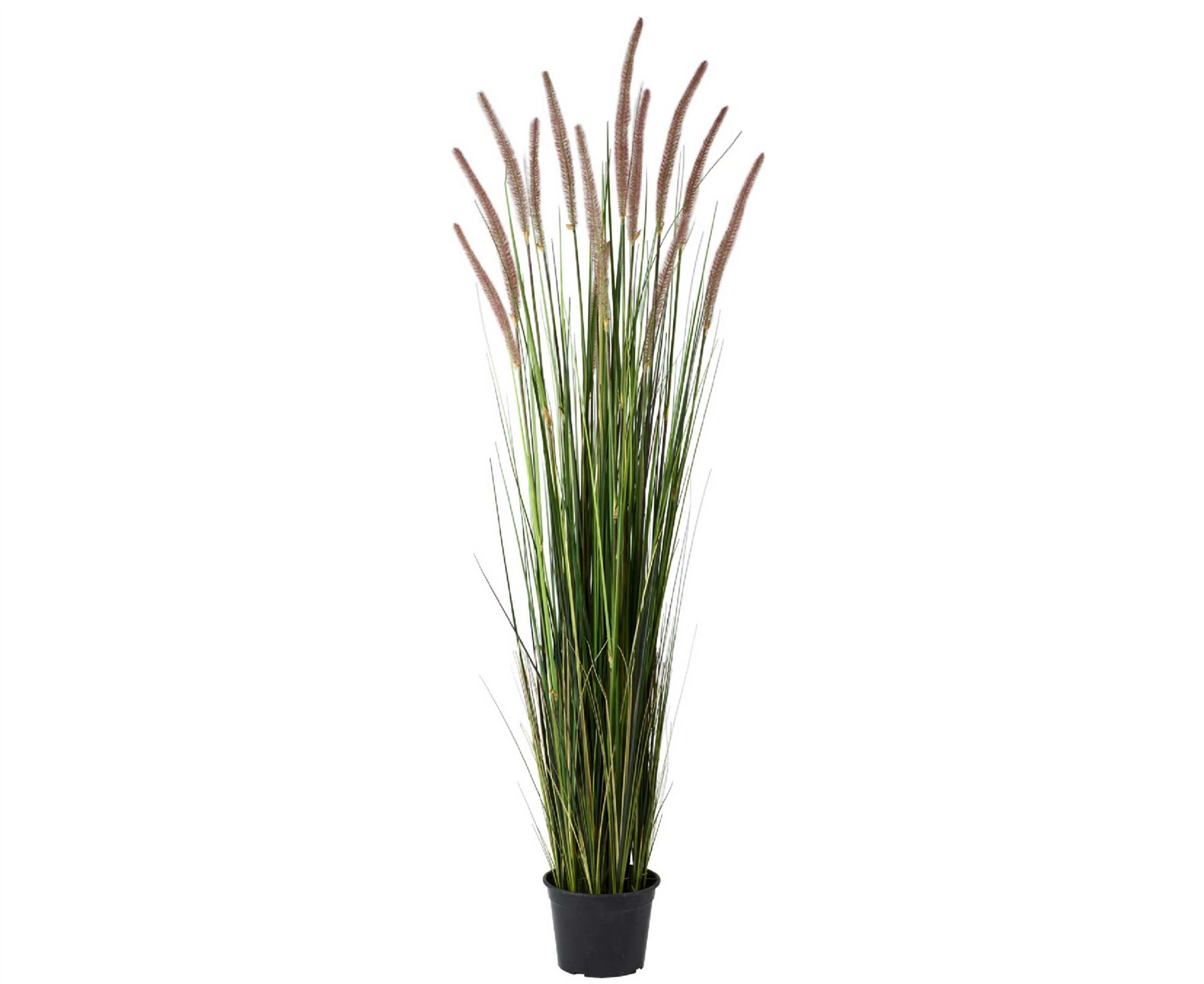 Bloom 5ft potted grass tall 150cm artificial plant home for Tall ornamental grass plants