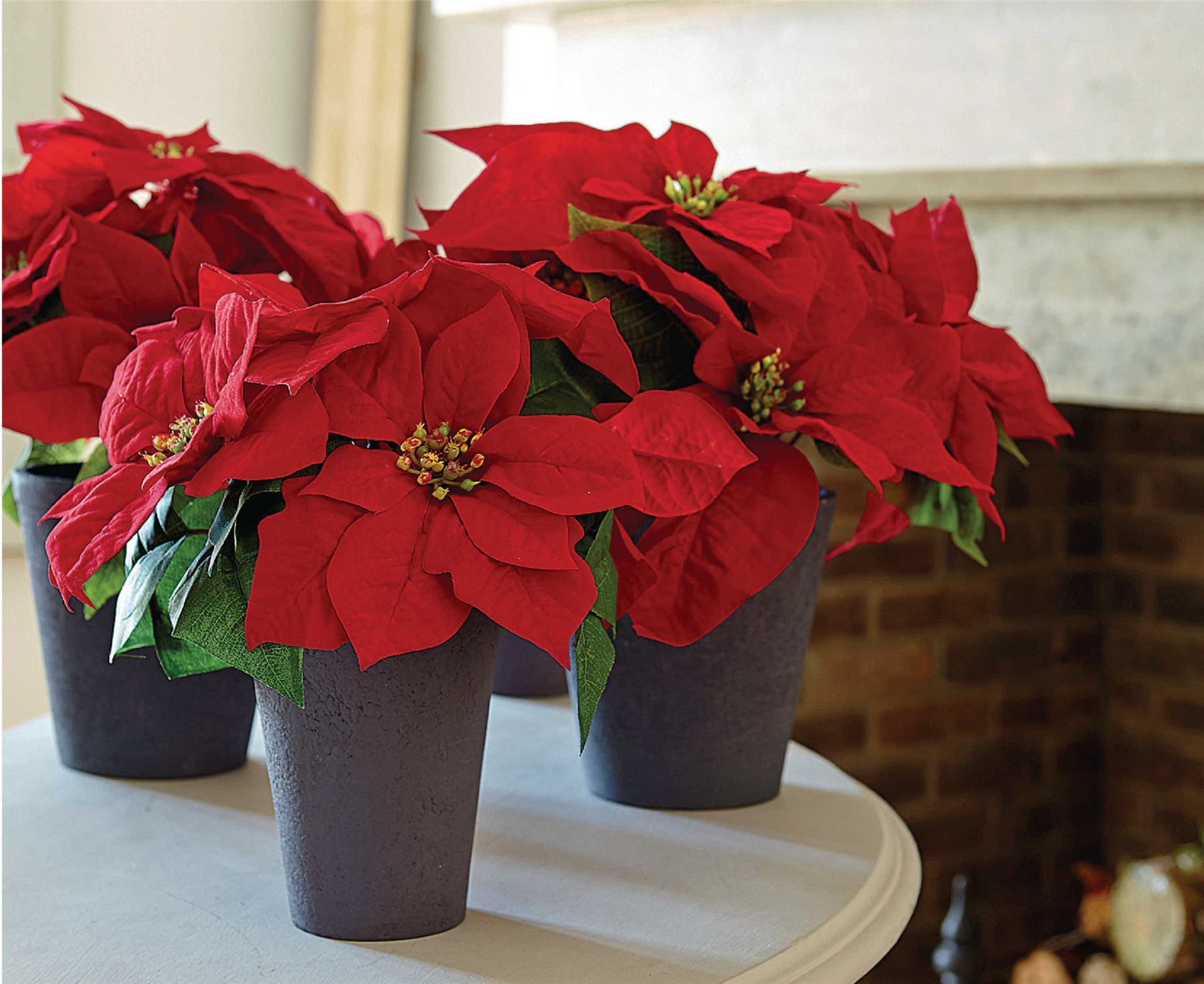 Bloom large poinsettia christmas potted artificial silk