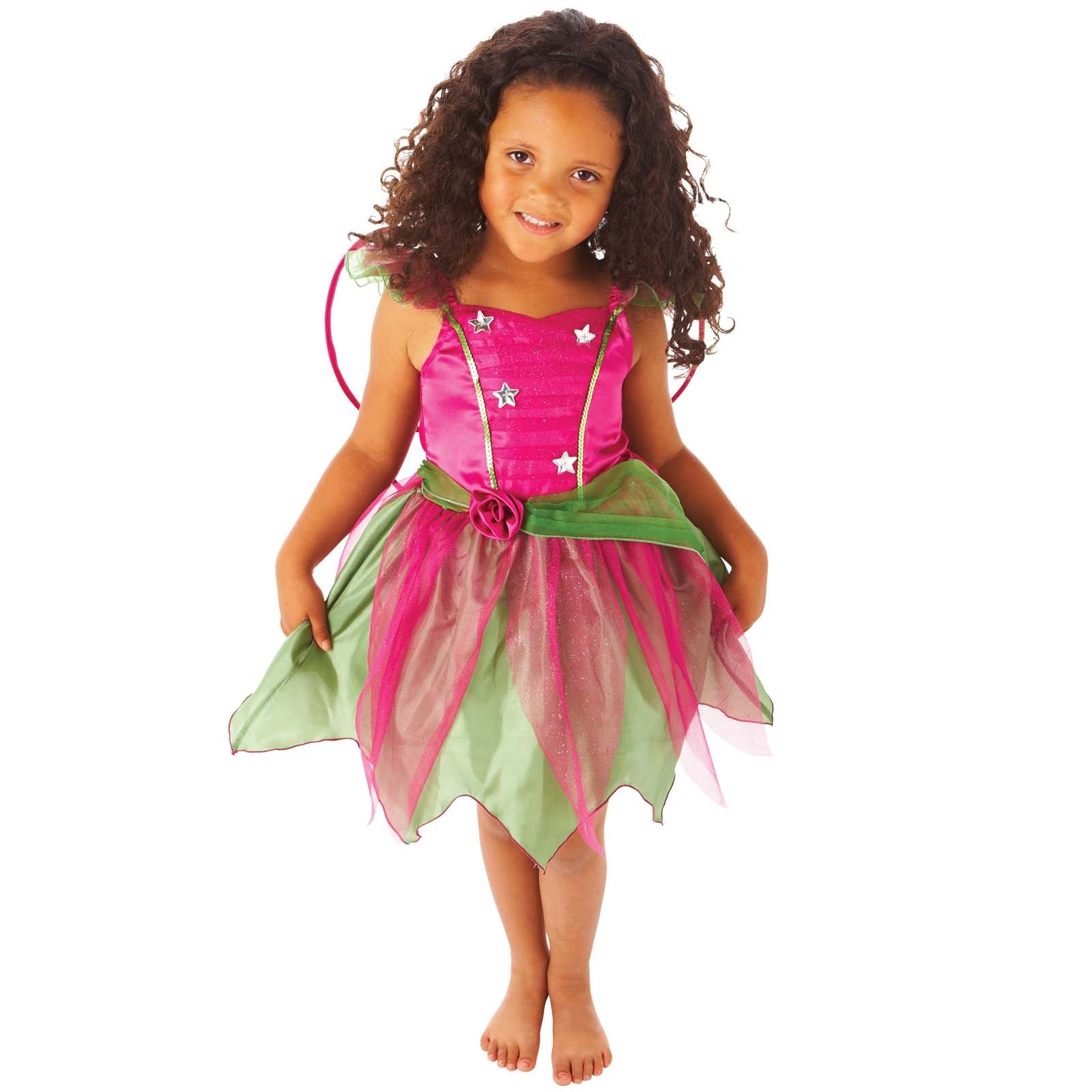 Girls Book Week Fairy Costume Nature Flower Garden Fairy Princess Outfit Wings