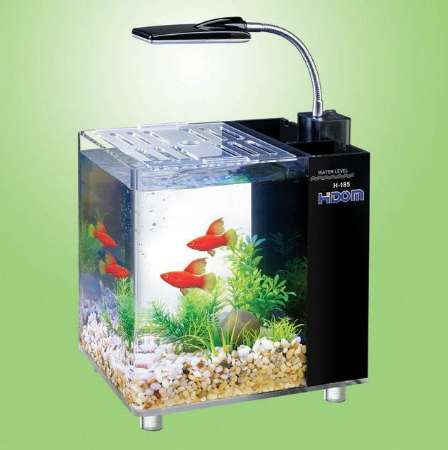 hidom aquarium fish tank 10 and 15 litre mini office. Black Bedroom Furniture Sets. Home Design Ideas