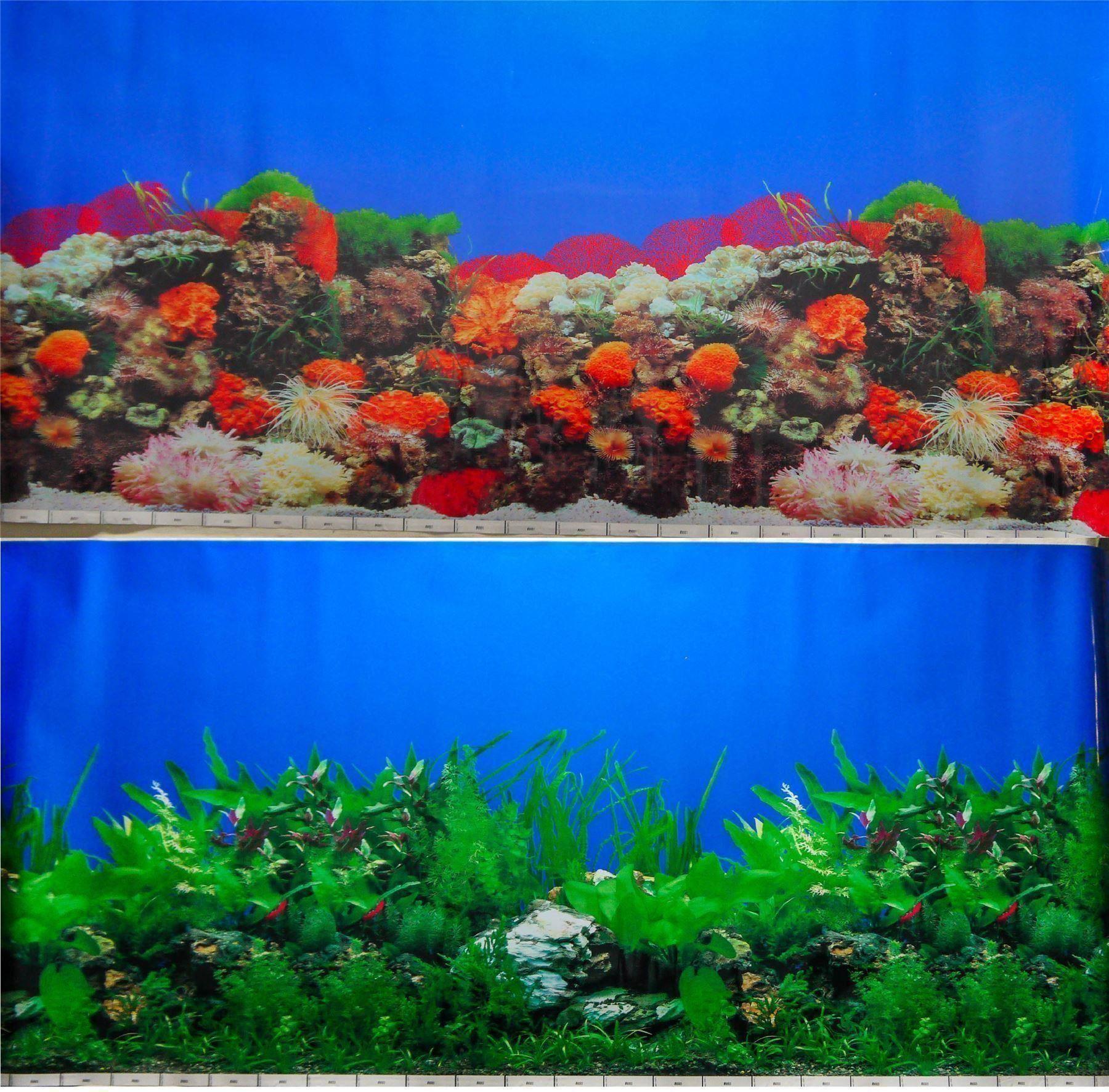 Ebay for Vivero para peces