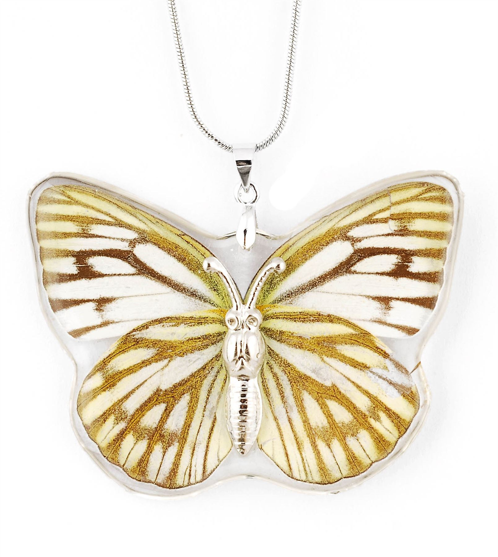 Real Insect Butterfly Wings Necklace Pendant Charm Jewelry ...