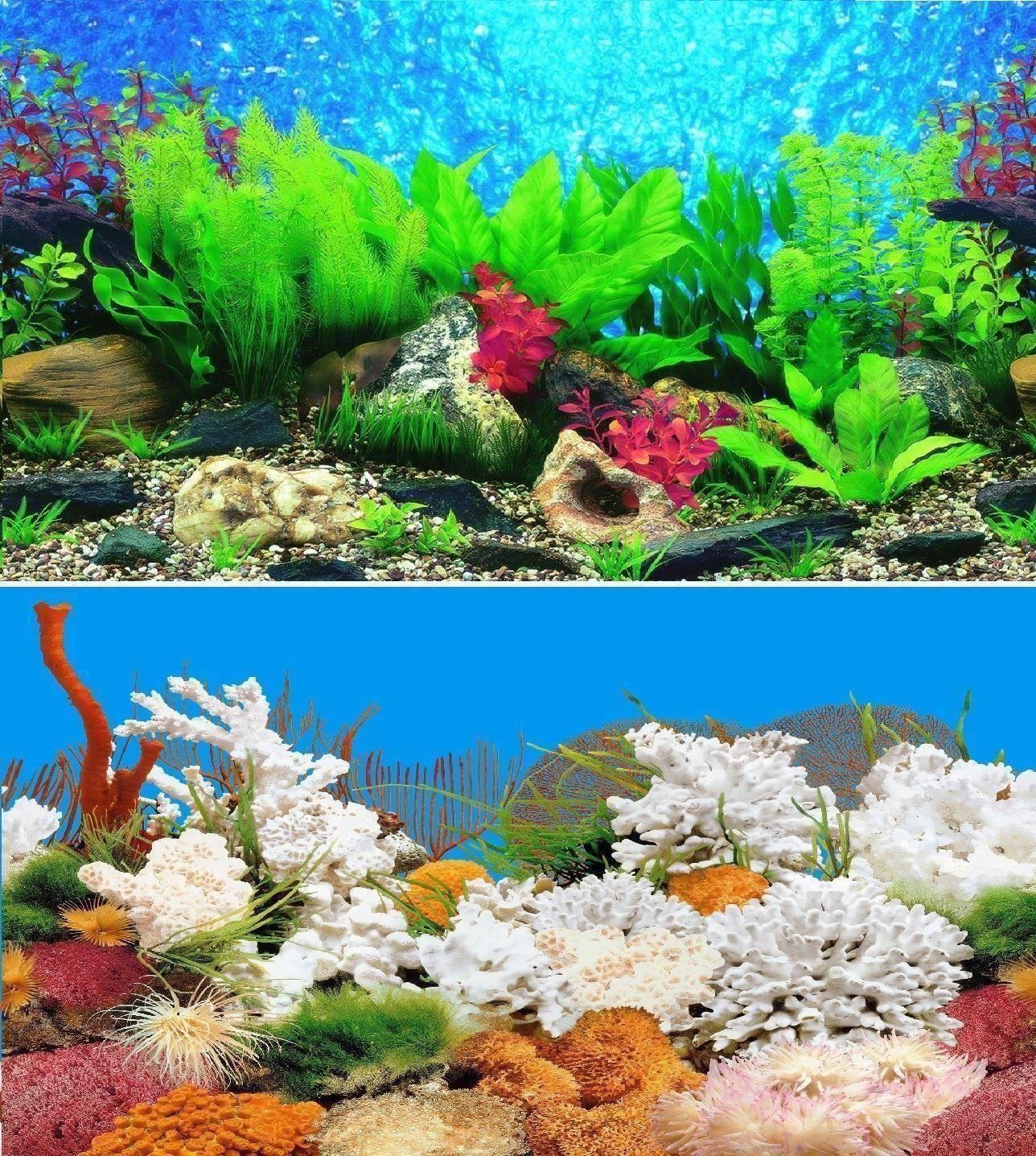 24 double sided aquarium background backdrop fish tank for Double fish tank