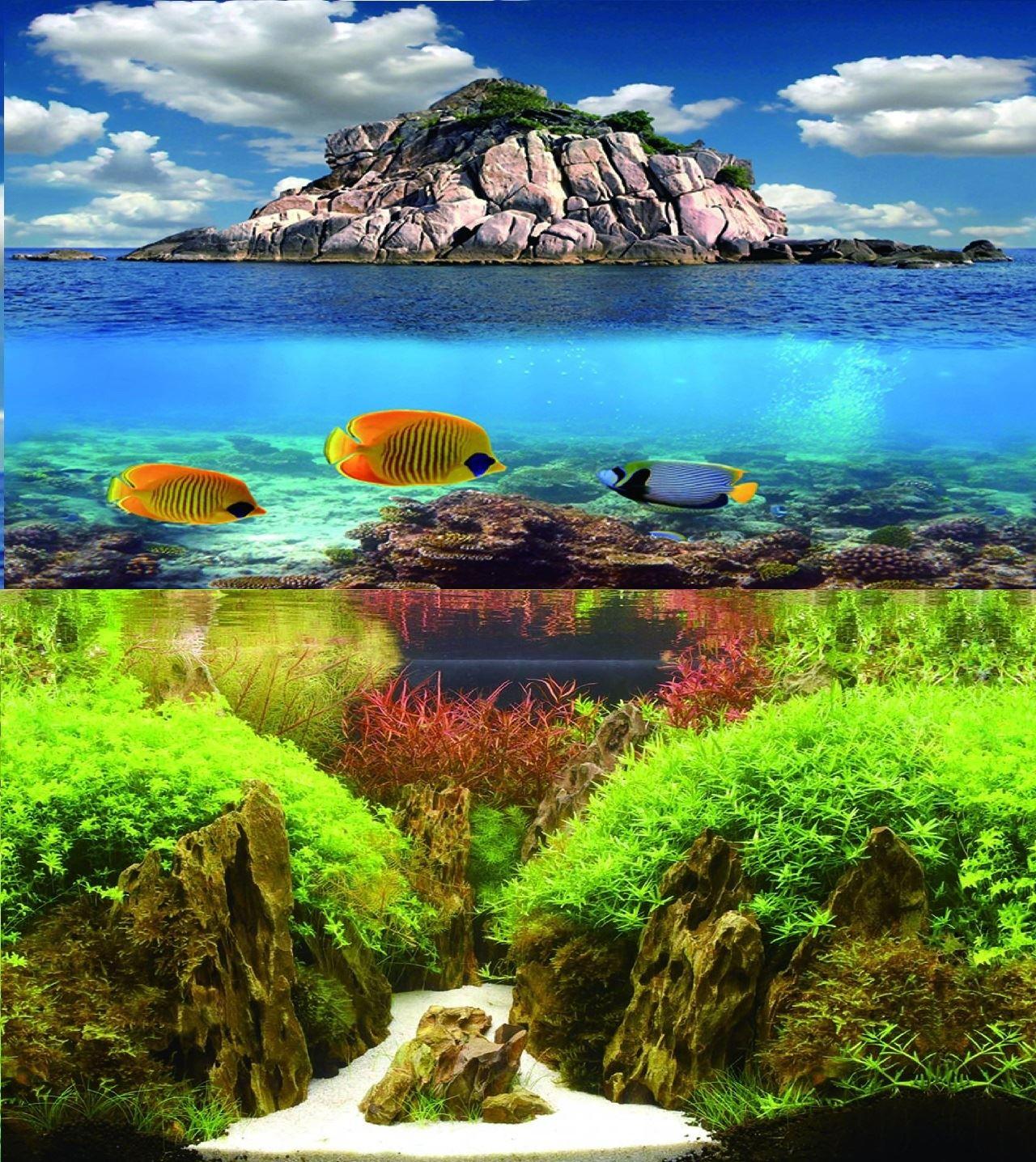 Fish aquarium for sale in pakistan - 12 Double Sided Aquarium Background Backdrop Fish Tank Reptile Vivarium Marine