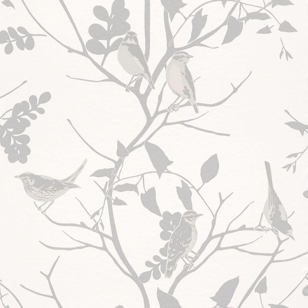 Silver Grey White 250626 Songbird Birds Trees
